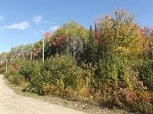Lot for sale in Sainte-Béatrix, Lanaudière, Chemin  Martin-Prévost, 22783786 - Centris