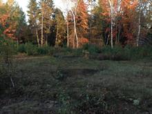 Lot for sale in Saint-Boniface, Mauricie, Rue  David, 24381854 - Centris