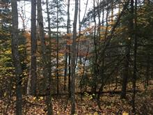 Lot for sale in Alleyn-et-Cawood, Outaouais, Chemin  Presley, 27830417 - Centris