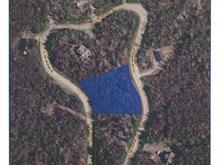 Terrain à vendre à Saint-Faustin/Lac-Carré, Laurentides, Chemin des Hirondelles, 17129521 - Centris