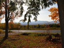 Lot for sale in Potton, Estrie, 63, Chemin  Bellevue, 27364827 - Centris