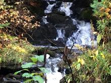 Terre à vendre à Adstock, Chaudière-Appalaches, Chemin  Sacré-Coeur Ouest, 20876717 - Centris