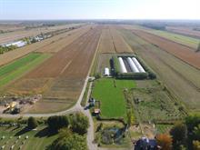 Land for sale in Sainte-Anne-de-Sorel, Montérégie, Chemin du Chenal-du-Moine, 23830147 - Centris