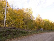 Lot for sale in Lac-des-Plages, Outaouais, Chemin du Lac-de-la-Carpe, 13734166 - Centris