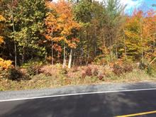 Lot for sale in Rawdon, Lanaudière, Chemin  Vincent-Massey, 25082289 - Centris