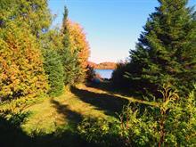Maison à vendre à Saint-Faustin/Lac-Carré, Laurentides, 41, Chemin du Muguet, 25521361 - Centris