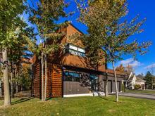 Maison à vendre à Saint-Jean-sur-Richelieu, Montérégie, 339, Rue des Huards, 26915940 - Centris