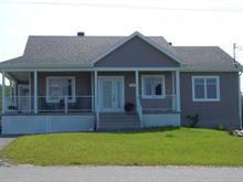 Maison à vendre à Saint-Rosaire, Centre-du-Québec, 29, Rue  Lafrenière, 20035525 - Centris