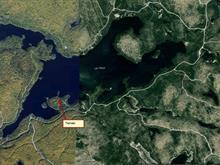 Terrain à vendre à Ferme-Neuve, Laurentides, Chemin du Lac-Major, 11296673 - Centris