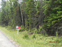 Lot for sale in Nominingue, Laurentides, 1025A, Chemin de l'Aubépine, 26109741 - Centris
