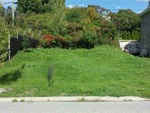 Terrain à vendre à Gatineau (Gatineau), Outaouais, 119, Rue de Saint-Vallier, 28989656 - Centris