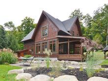 Maison à vendre à Mont-Tremblant, Laurentides, 172, Rue  Gouin, 9334571 - Centris