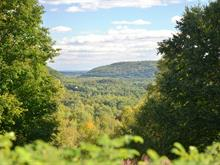Lot for sale in Sainte-Adèle, Laurentides, Rue de la Campagne, 26769191 - Centris