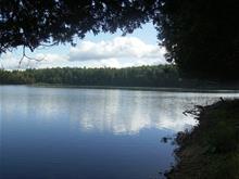 Terrain à vendre à Lac-Saint-Paul, Laurentides, Chemin du Lac-Sarrazin, 21405800 - Centris