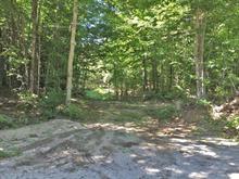 Terrain à vendre à Saint-André-Avellin, Outaouais, Rang  Saint-Joseph Est, 12052082 - Centris