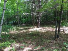 Lot for sale in Lac-Simon, Outaouais, Chemin  Caron, 19991755 - Centris