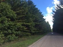 Land for sale in Pontiac, Outaouais, 4333, Chemin du Lac-des-Loups, 22771235 - Centris