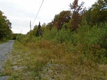 Land for sale in Nantes, Estrie, Chemin  Baillargeon, 13769693 - Centris