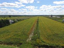 Land for sale in Saint-Nazaire-d'Acton, Montérégie, 10e Rang Est, 23627793 - Centris
