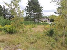 Terrain à vendre à Frontenac, Estrie, Route  204, 12815543 - Centris