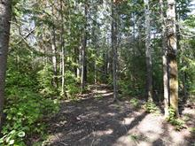Lot for sale in Rapide-Danseur, Abitibi-Témiscamingue, Route  388, 10041090 - Centris