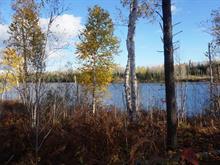 Terrain à vendre à Val-d'Or, Abitibi-Témiscamingue, Chemin  Sleepy, 13988439 - Centris