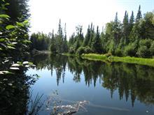 Terrain à vendre à Rivière-Rouge, Laurentides, Route  117 Nord, 10093305 - Centris