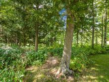 Lot for sale in Lac-Brome, Montérégie, Rue  Stone Haven, 13930416 - Centris