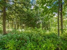 Lot for sale in Lac-Brome, Montérégie, Chemin  Papineau, 25379347 - Centris