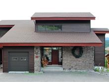 Maison à vendre à Saint-David-de-Falardeau, Saguenay/Lac-Saint-Jean, 164, Rue de Vail, 26609902 - Centris