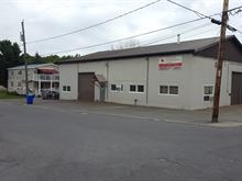 Commercial building for sale in Buckingham (Gatineau), Outaouais, 125, Rue  Jean-XXIII, 14091273 - Centris