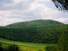 Terrain à vendre à Saint-Jean-de-Matha, Lanaudière, Chemin du Lac-de-la-Belle-Montagne, 19918814 - Centris