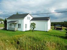 Maison à vendre à Senneterre - Paroisse, Abitibi-Témiscamingue, 226, Route  113 Nord, 9688181 - Centris