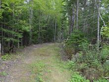 Lot for sale in Bonaventure, Gaspésie/Îles-de-la-Madeleine, Rang 5, 26225877 - Centris