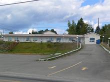 Immeuble à revenus à vendre à Chandler, Gaspésie/Îles-de-la-Madeleine, 365, boulevard  René-Lévesque Est, 23414234 - Centris