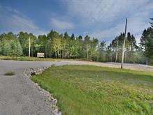 Terrain à vendre à Labelle, Laurentides, Route du Curé-Labelle, 28604856 - Centris