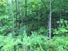 Land for sale in Wentworth-Nord, Laurentides, Chemin du Lac-Farmer, 10884161 - Centris