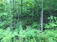 Terre à vendre à Wentworth-Nord, Laurentides, Chemin du Lac-Farmer, 10884161 - Centris