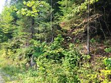 Lot for sale in Saint-Faustin/Lac-Carré, Laurentides, Chemin des Lupins, 19824123 - Centris