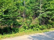 Terrain à vendre à Saint-Faustin/Lac-Carré, Laurentides, Chemin des Lupins, 10160702 - Centris