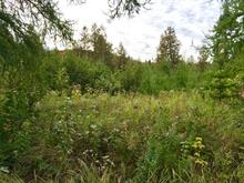 Lot for sale in Sainte-Lucie-des-Laurentides, Laurentides, Rue  R.-Deslauriers, 11978332 - Centris