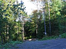 Lot for sale in Sainte-Adèle, Laurentides, Chemin du Renard, 22813829 - Centris