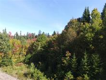 Lot for sale in Saint-Adolphe-d'Howard, Laurentides, Chemin de la Sapinière, 21573015 - Centris
