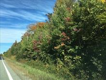 Lot for sale in Eastman, Estrie, Chemin  George-Bonnallie, 20243001 - Centris