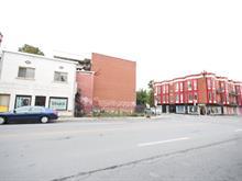 Duplex à vendre à Le Plateau-Mont-Royal (Montréal), Montréal (Île), 117 - 119, Avenue des Pins Est, 25262234 - Centris