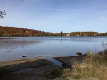 Lot for sale in Wentworth-Nord, Laurentides, Chemin  Lobel, 28982179 - Centris