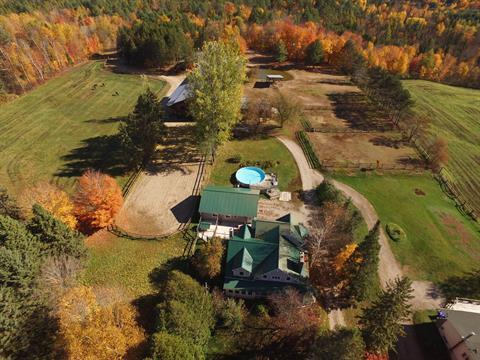 Fermette à vendre à Saint-André-Avellin, Outaouais, 1104, Route  321 Nord, 18821263 - Centris