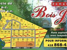 Terrain à vendre à Saint-Antonin, Bas-Saint-Laurent, Rue des Samares, 8665451 - Centris