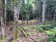 Lot for sale in Sainte-Mélanie, Lanaudière, Rue des Cîmes, 22222093 - Centris