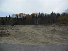 Terrain à vendre à Mont-Laurier, Laurentides, Chemin du 4e-Rang Sud, 22929120 - Centris